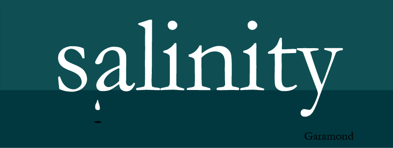 blog image - friendly fonts-salinity